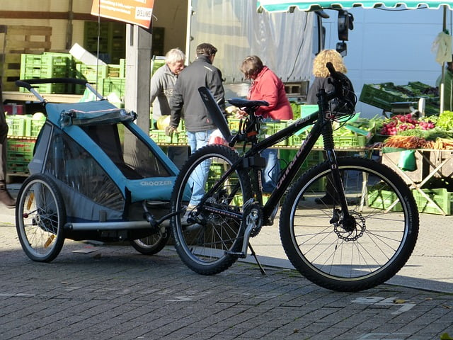 fietskar voor kinderen