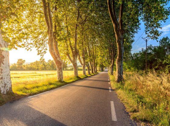 lf route voor fiets meerdaagse