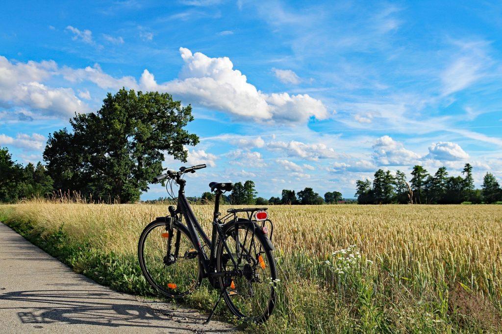 stella elektrische fiets prijzen