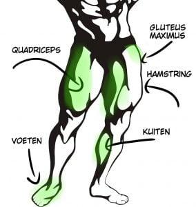 welke beenspieren train je met fietsen